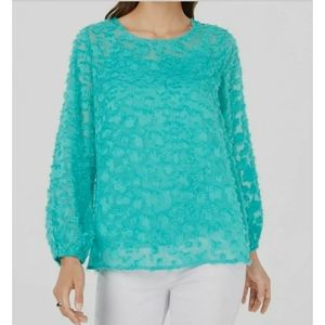 Alfani Sheer Textured Long-Sleeve Casual Blouse